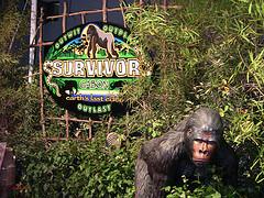 Survivor Gabon